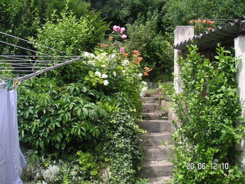 Garten eden 2011 for Garten eden